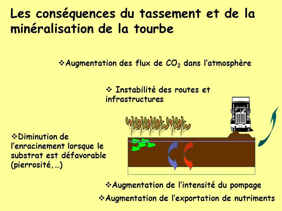 Les conséquences du tassement et de la minéralisation de la tourbe