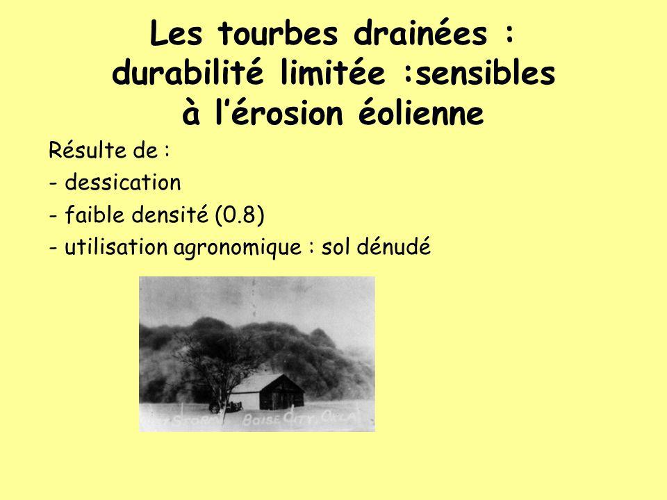 Les tourbes drainées : durabilité limitée :sensibles à l'érosion éolienne