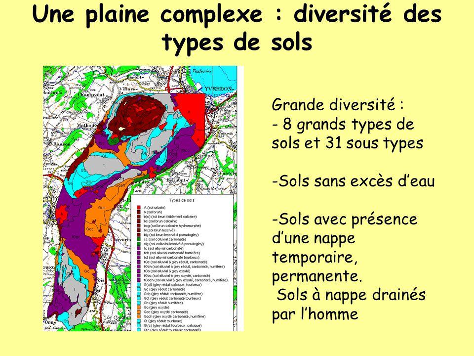 Une plaine complexe : diversité des types de sols