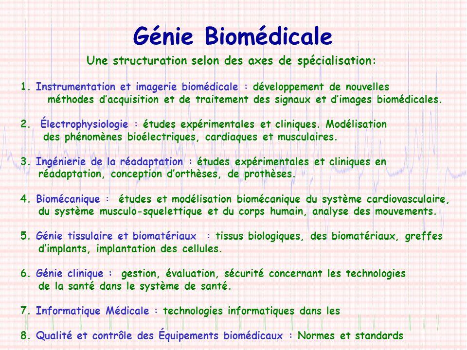 Génie Biomédicale Une structuration selon des axes de spécialisation: