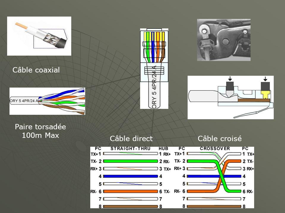 Câble coaxial Paire torsadée 100m Max Câble direct Câble croisé
