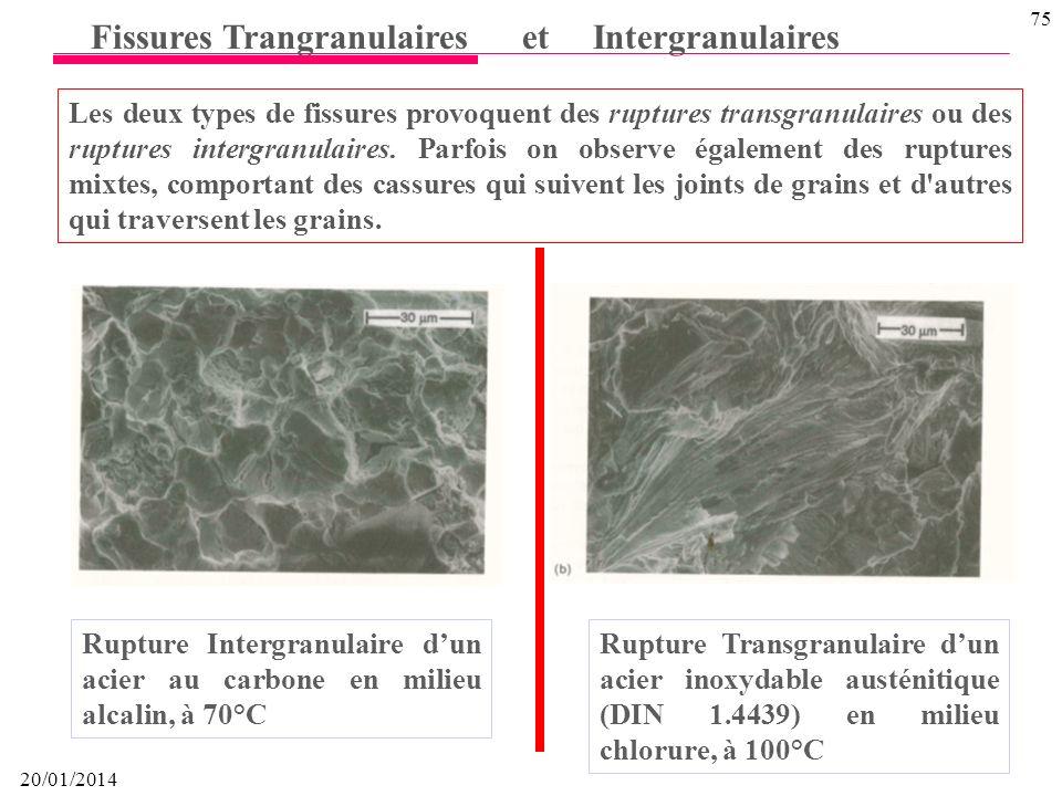 Fissures Trangranulaires et Intergranulaires