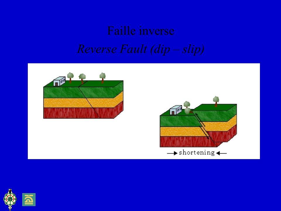 Reverse Fault (dip – slip)