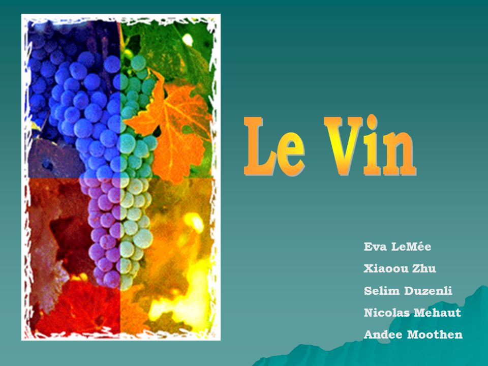 Le Vin Eva LeMée Xiaoou Zhu Selim Duzenli Nicolas Mehaut Andee Moothen
