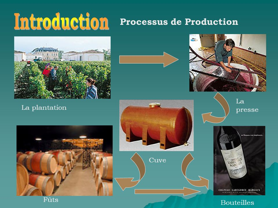 Introduction Processus de Production La presse La plantation Cuve Fûts
