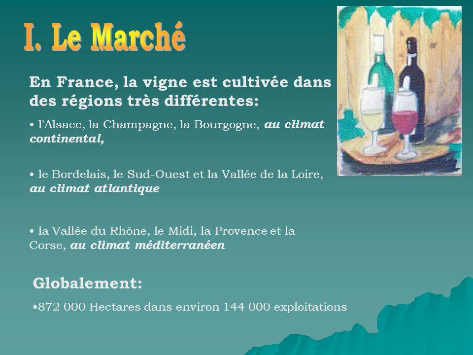 I. Le Marché En France, la vigne est cultivée dans des régions très différentes: l Alsace, la Champagne, la Bourgogne, au climat continental,