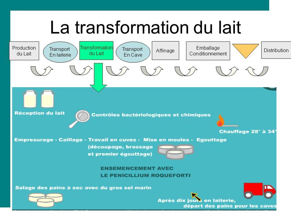 La transformation du lait