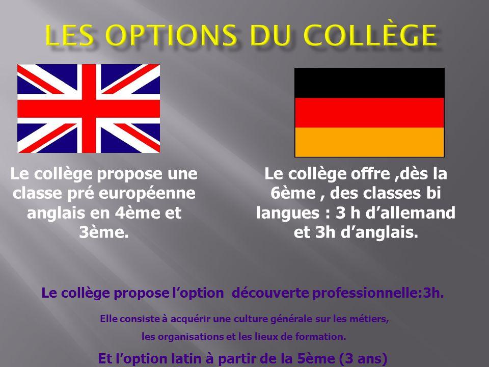 Les options du collège Le collège propose une classe pré européenne anglais en 4ème et 3ème.