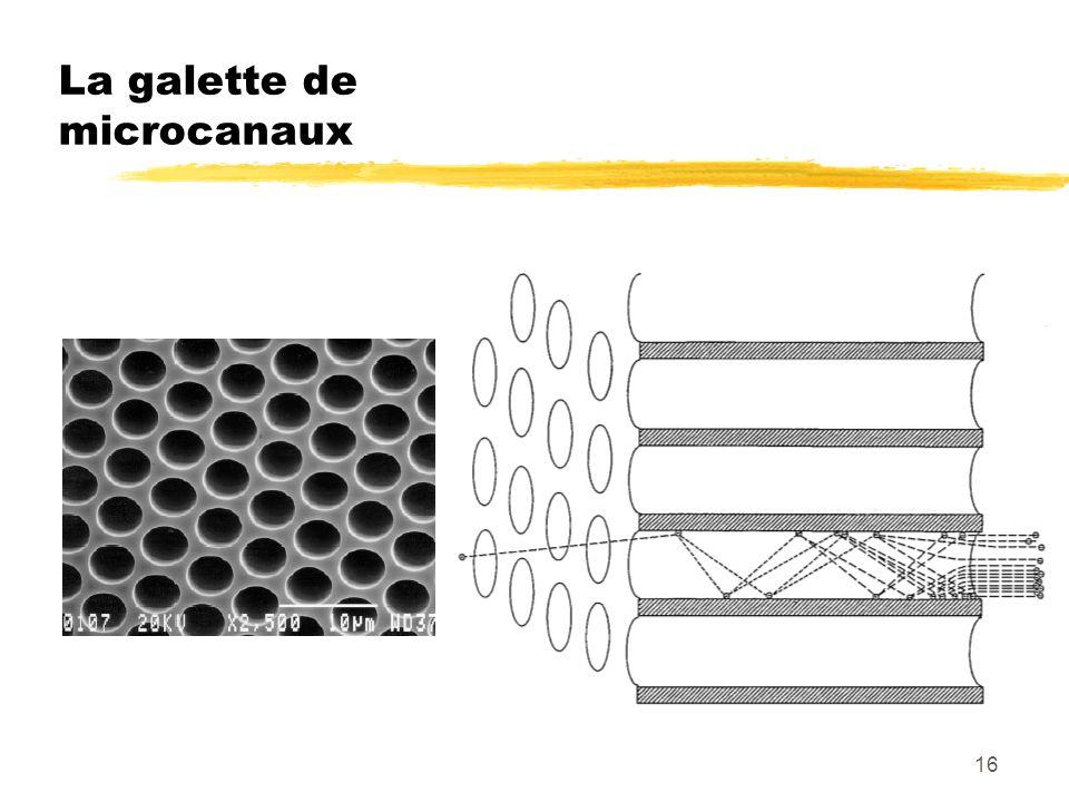 La galette de microcanaux