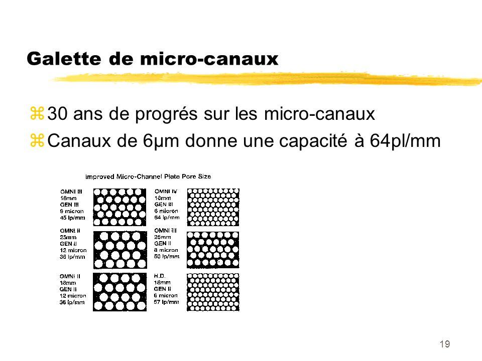 Galette de micro-canaux