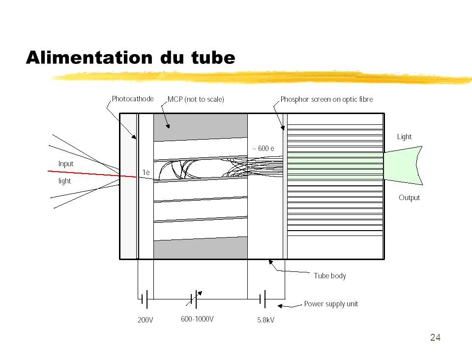 Alimentation du tube