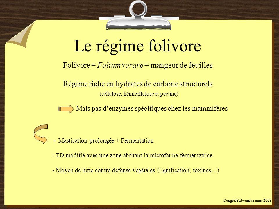 Le régime folivore Folivore = Folium vorare = mangeur de feuilles