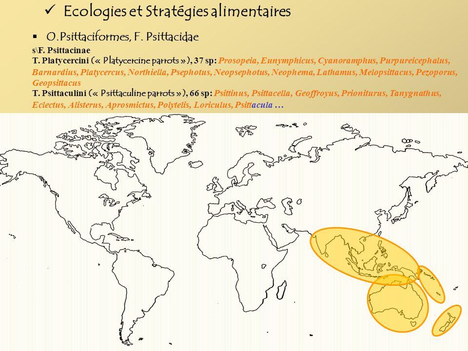 Ecologies et Stratégies alimentaires