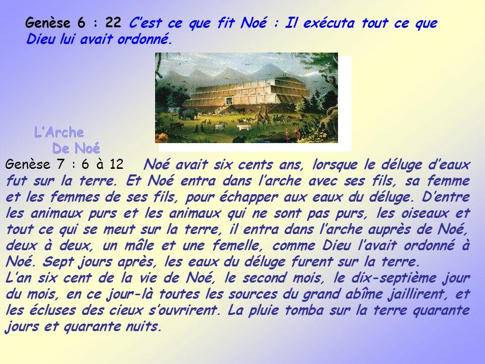 Genèse 6 : 22 C'est ce que fit Noé : Il exécuta tout ce que Dieu lui avait ordonné.
