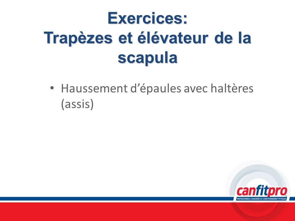 Exercices: Trapèzes et élévateur de la scapula