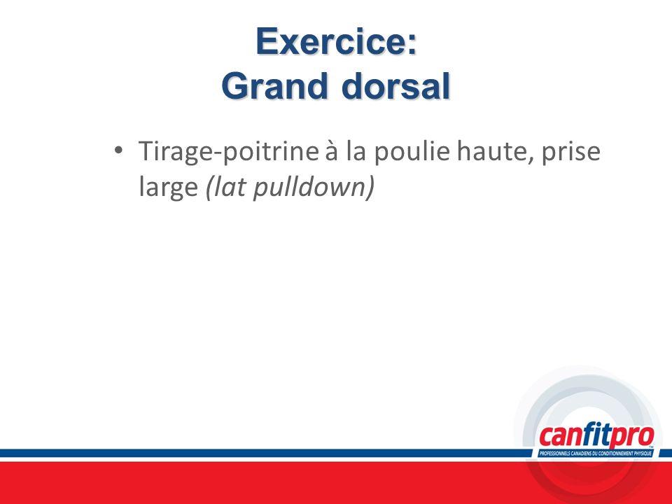 Exercice: Grand dorsal