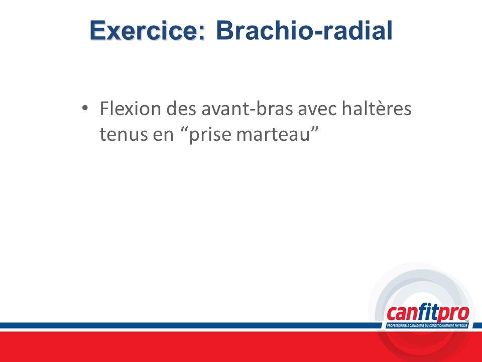 Exercice: Brachio-radial