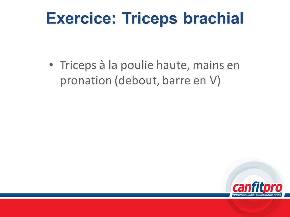 Exercice: Triceps brachial
