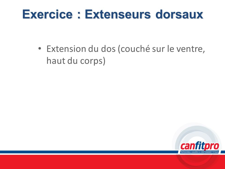 Exercice : Extenseurs dorsaux