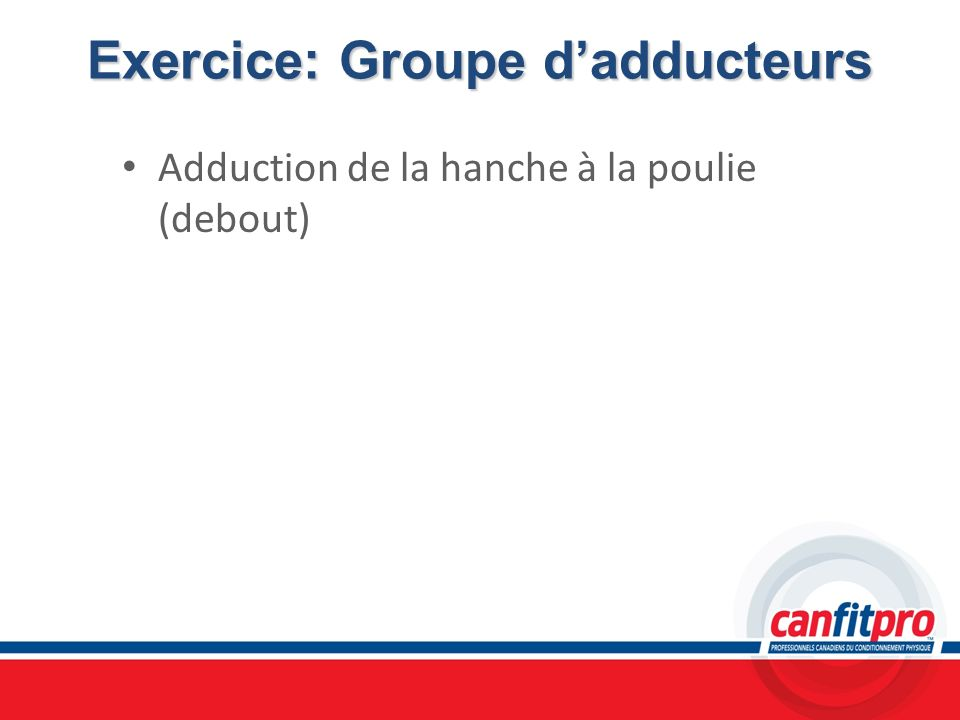 Exercice: Groupe d'adducteurs