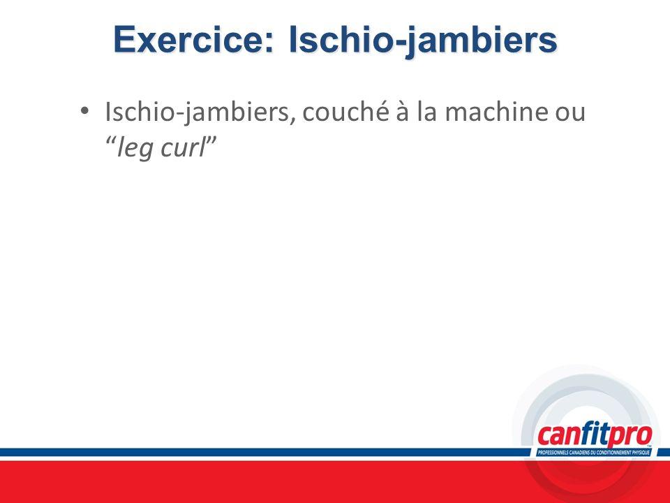 Exercice: Ischio-jambiers
