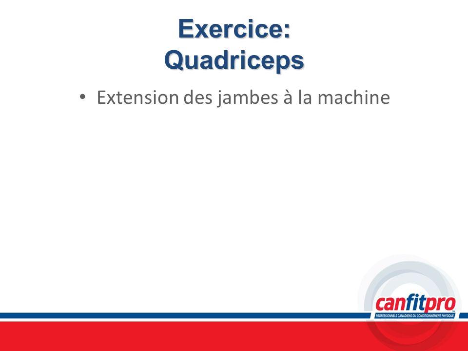 Exercice: Quadriceps Extension des jambes à la machine Chapitre 6