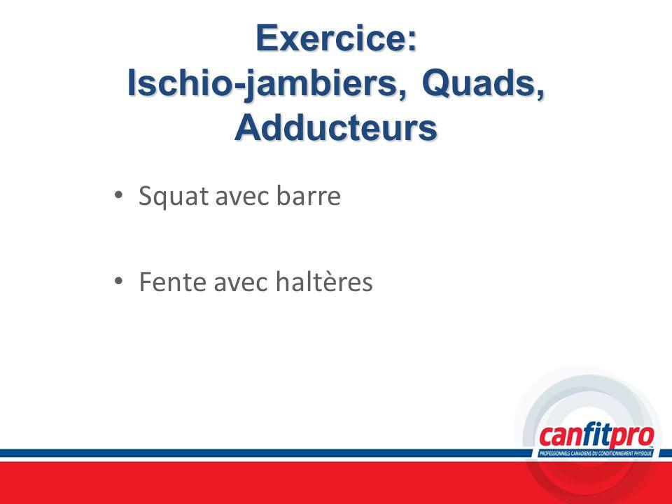 Exercice: Ischio-jambiers, Quads, Adducteurs