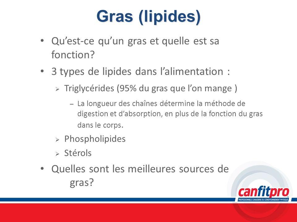 Gras (lipides) Qu'est-ce qu'un gras et quelle est sa fonction