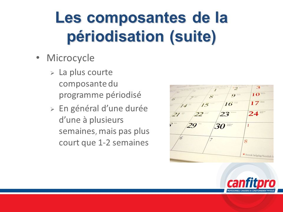 Les composantes de la périodisation (suite)