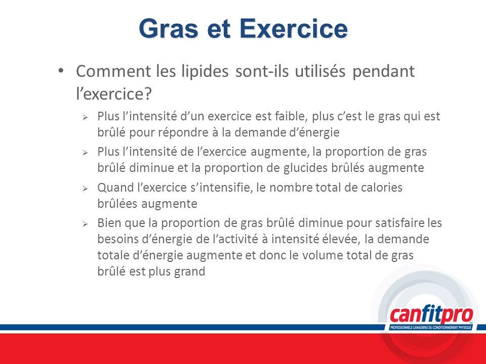Gras et Exercice Comment les lipides sont-ils utilisés pendant l'exercice