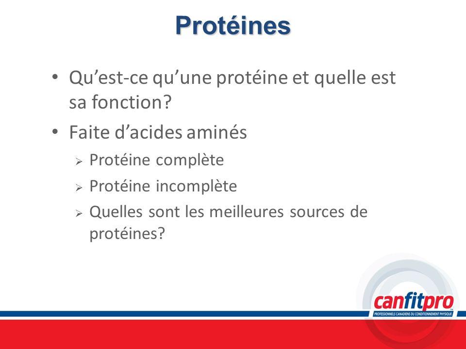 Protéines Qu'est-ce qu'une protéine et quelle est sa fonction