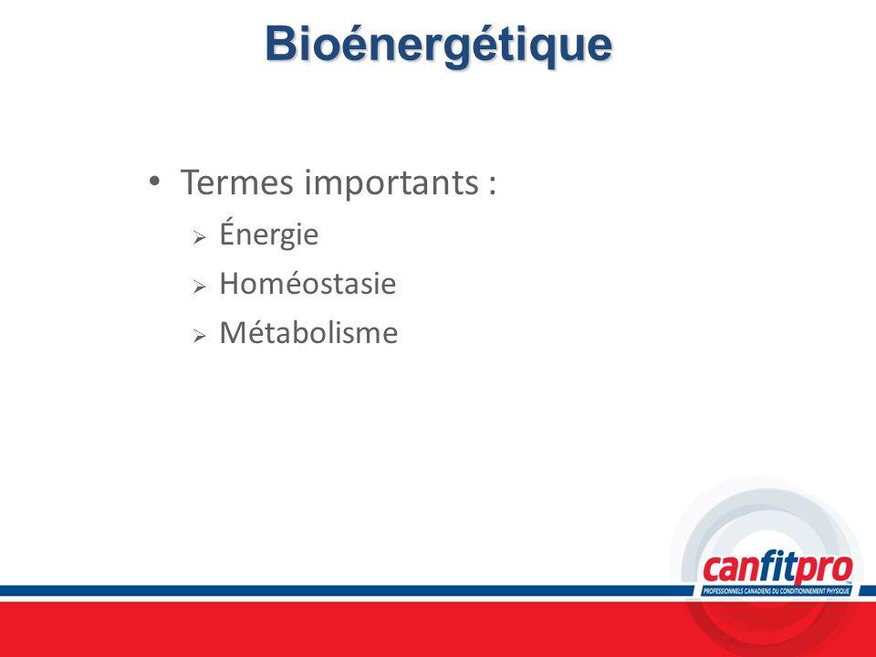 Bioénergétique Termes importants : Énergie Homéostasie Métabolisme