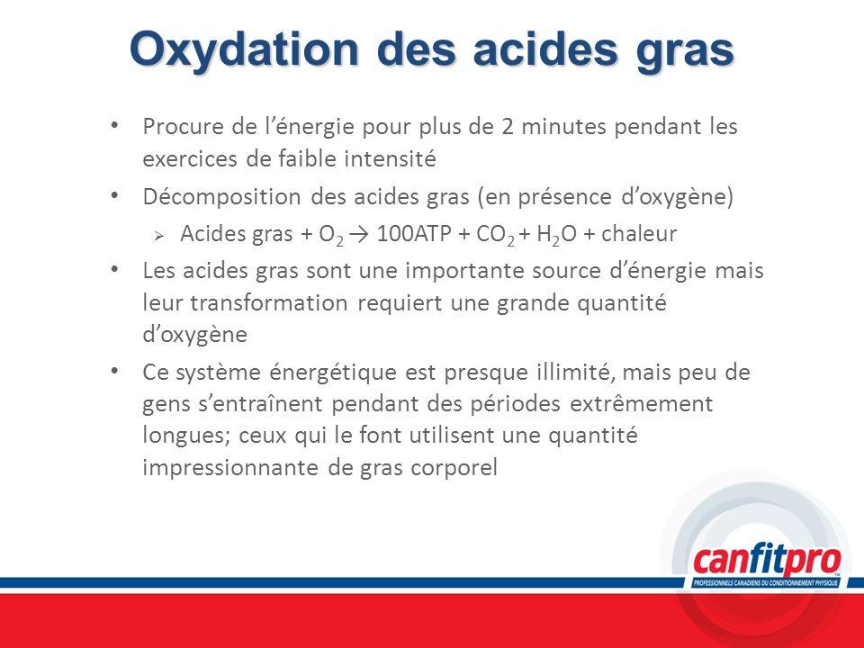 Oxydation des acides gras