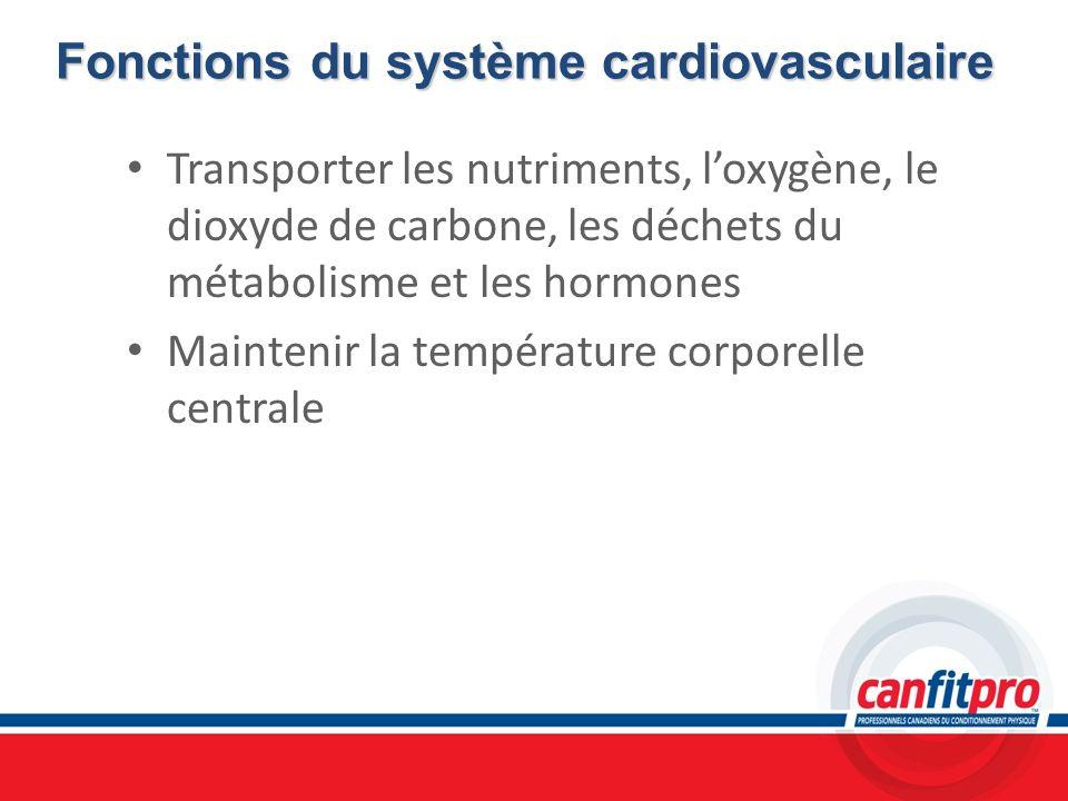 Fonctions du système cardiovasculaire