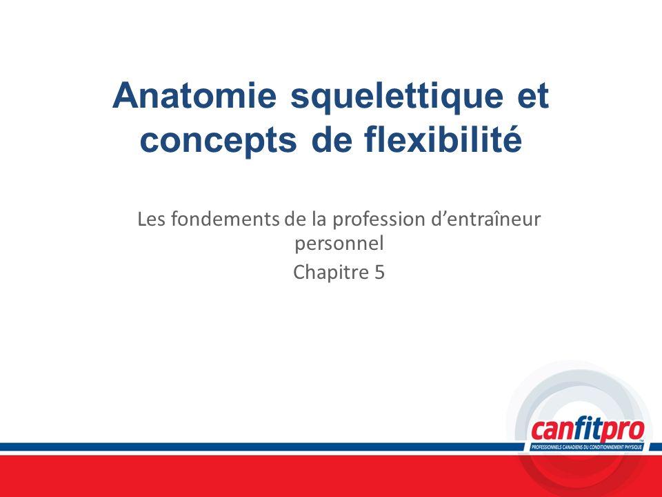 Anatomie squelettique et concepts de flexibilité