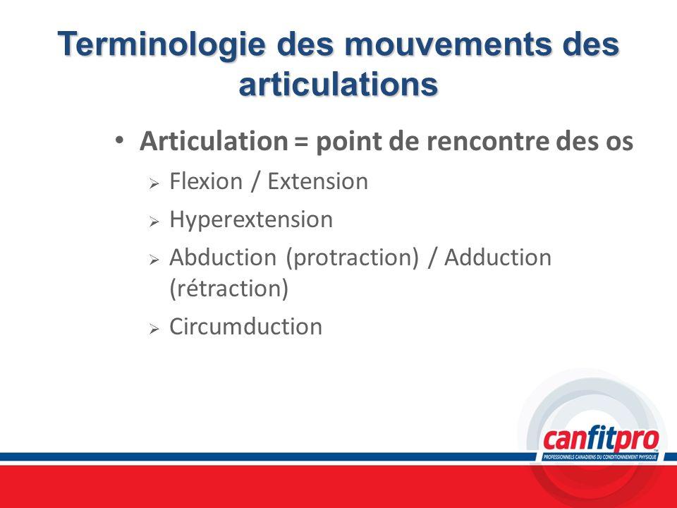 Terminologie des mouvements des articulations