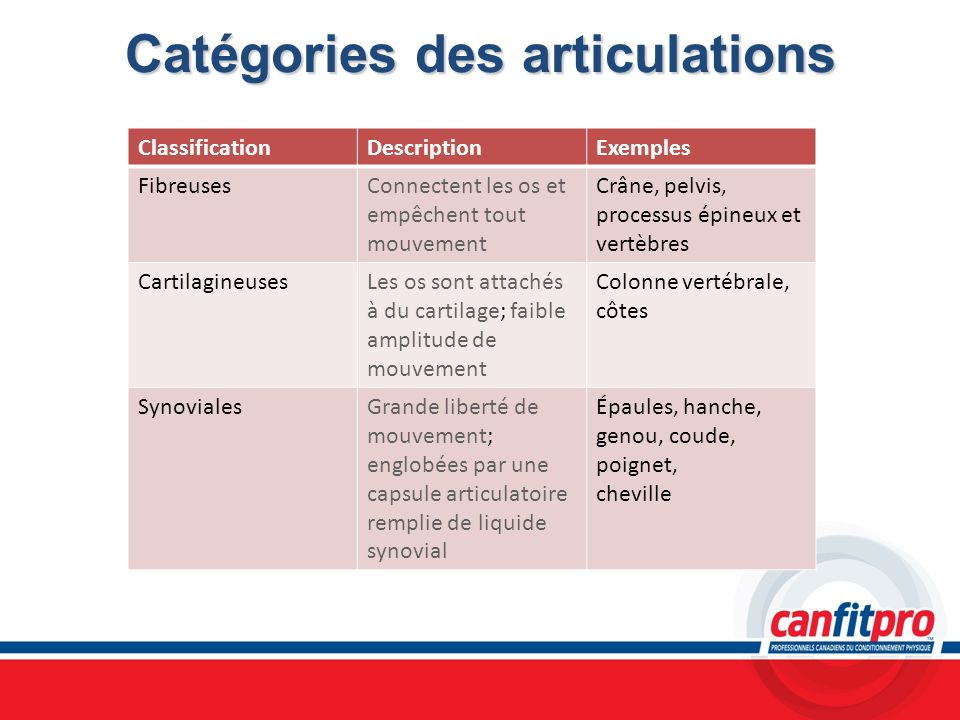 Catégories des articulations