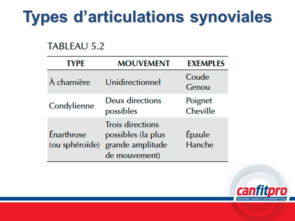 Types d'articulations synoviales