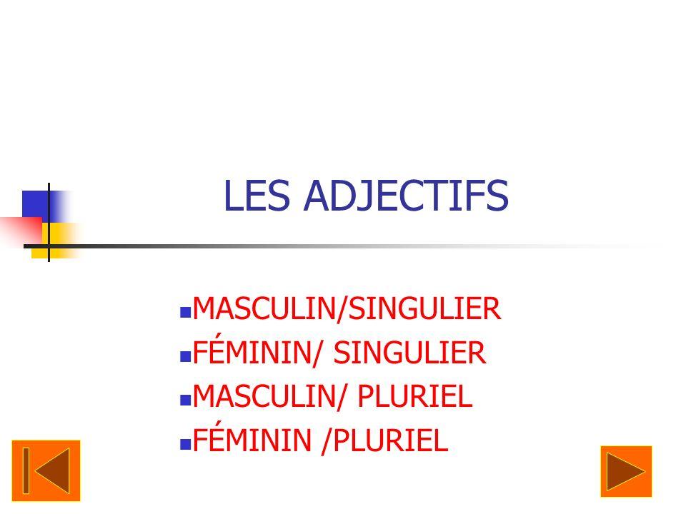 LES ADJECTIFS MASCULIN/SINGULIER FÉMININ/ SINGULIER MASCULIN/ PLURIEL
