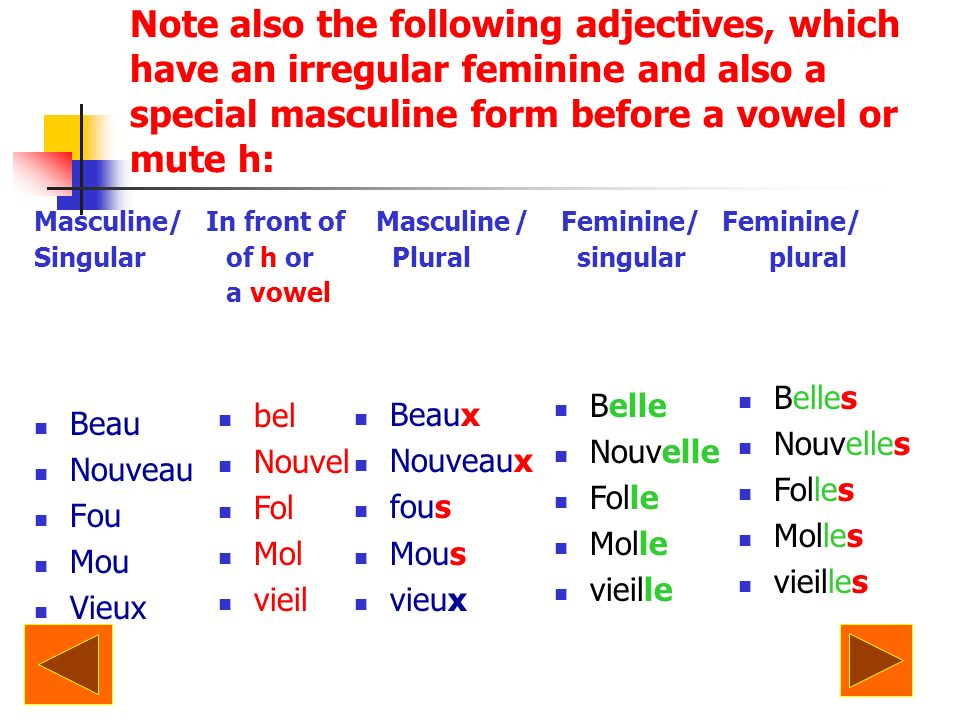 Note also the following adjectives, which have an irregular feminine and also a special masculine form before a vowel or mute h: