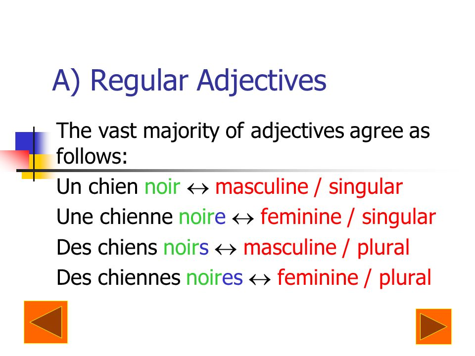 A) Regular Adjectives The vast majority of adjectives agree as follows: Un chien noir  masculine / singular.