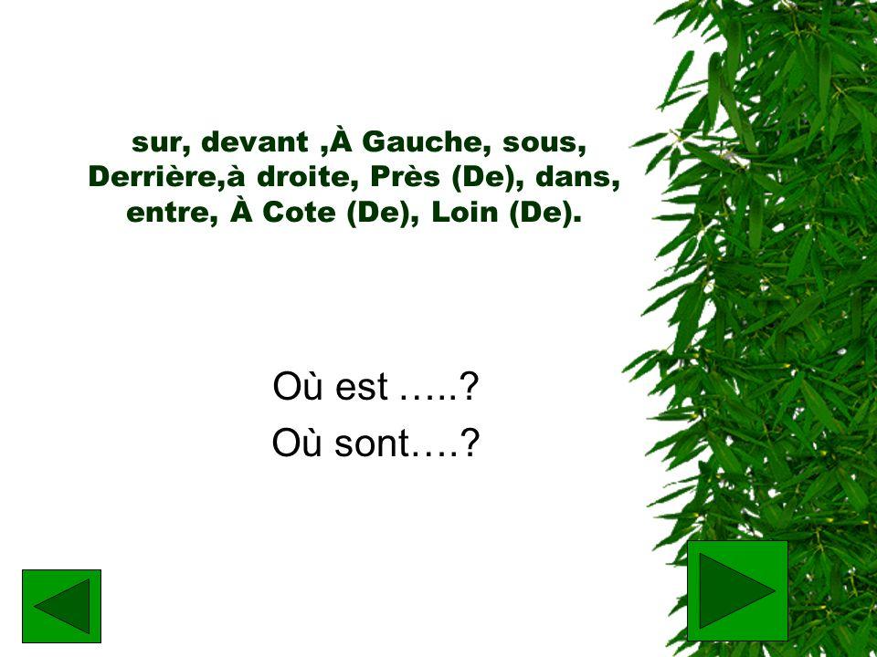 sur, devant ,À Gauche, sous, Derrière,à droite, Près (De), dans, entre, À Cote (De), Loin (De).