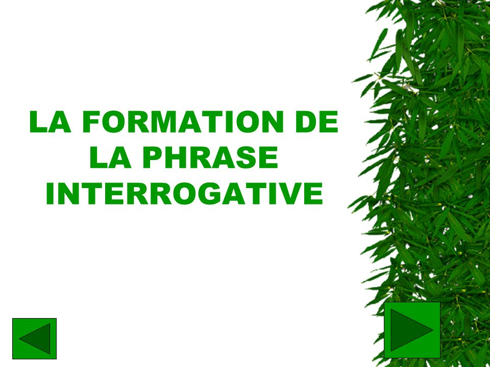 LA FORMATION DE LA PHRASE INTERROGATIVE