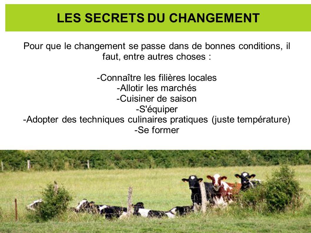 LES SECRETS DU CHANGEMENT