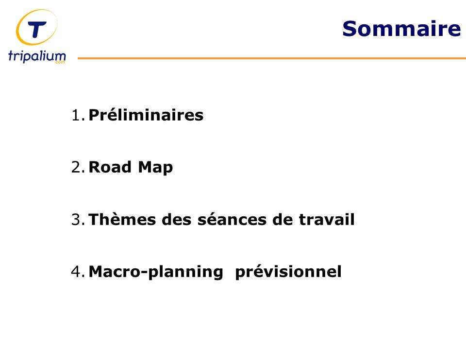 Sommaire 1. Préliminaires 2. Road Map 3. Thèmes des séances de travail