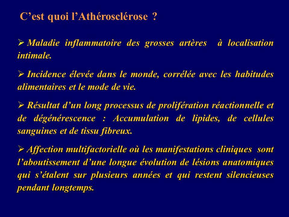 C'est quoi l'Athérosclérose