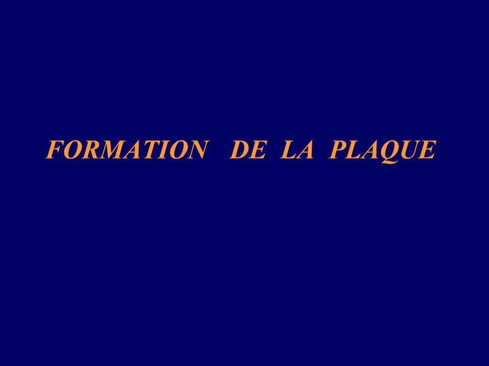 FORMATION DE LA PLAQUE