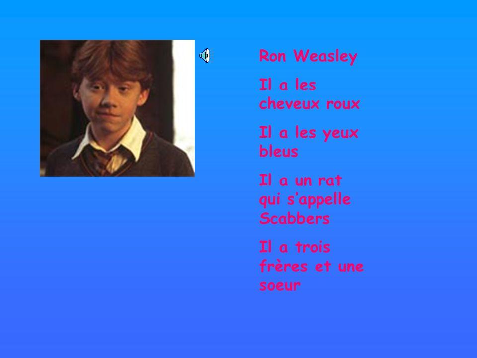 Ron WeasleyIl a les cheveux roux.Il a les yeux bleus.