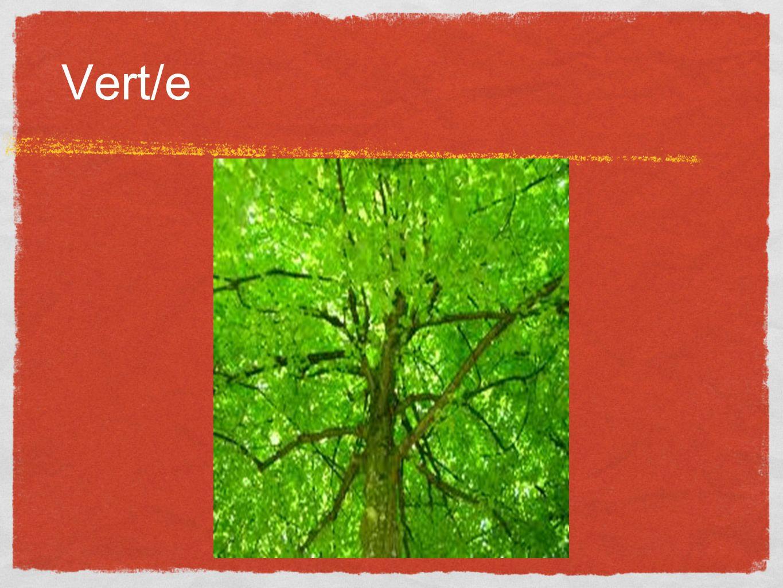 Vert/e
