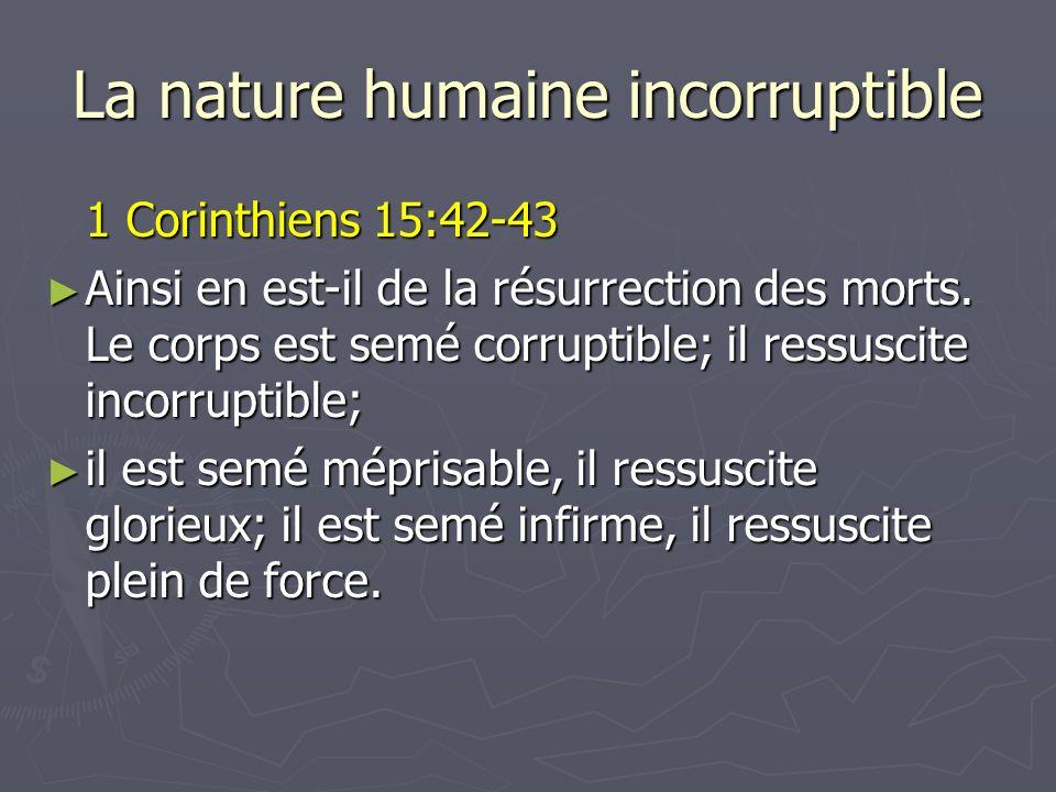 La nature humaine incorruptible